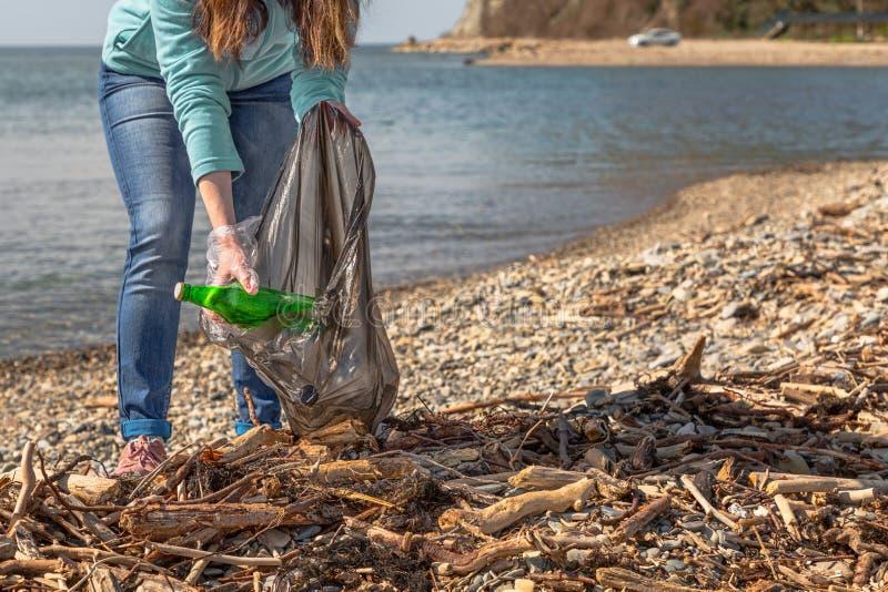 年轻女人在袋子投入收集的垃圾 清洗疆土环保 海和木垃圾 免版税库存图片