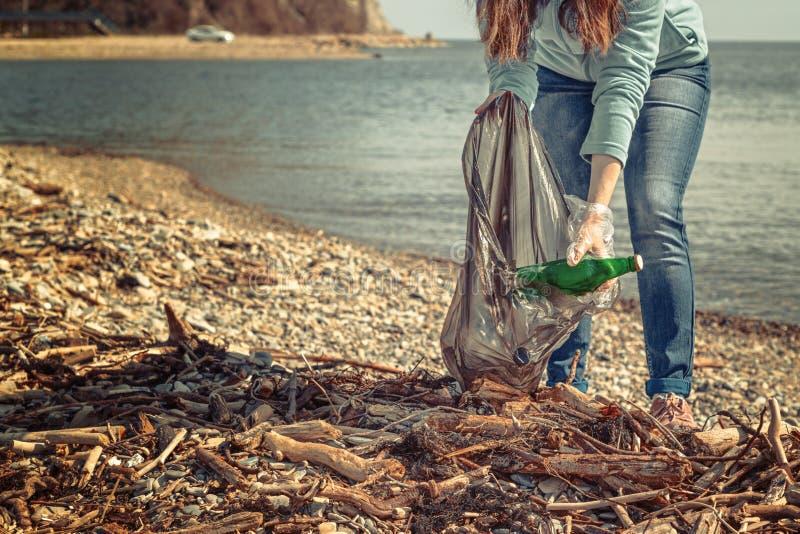 年轻女人在袋子投入收集的垃圾 清洗疆土环保 海和木垃圾 免版税库存照片