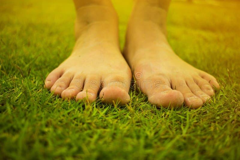 年轻女人的赤足走在新鲜,绿草在晴朗的夏天早晨 宁静的片刻 r Brigh 库存照片