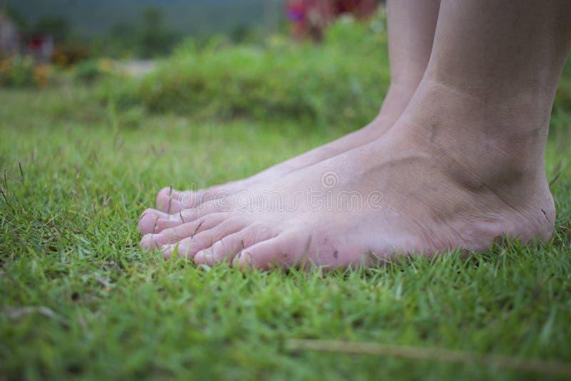 年轻女人的赤足走在新鲜,绿草在晴朗的夏天早晨 宁静的片刻 r Brigh 免版税库存照片