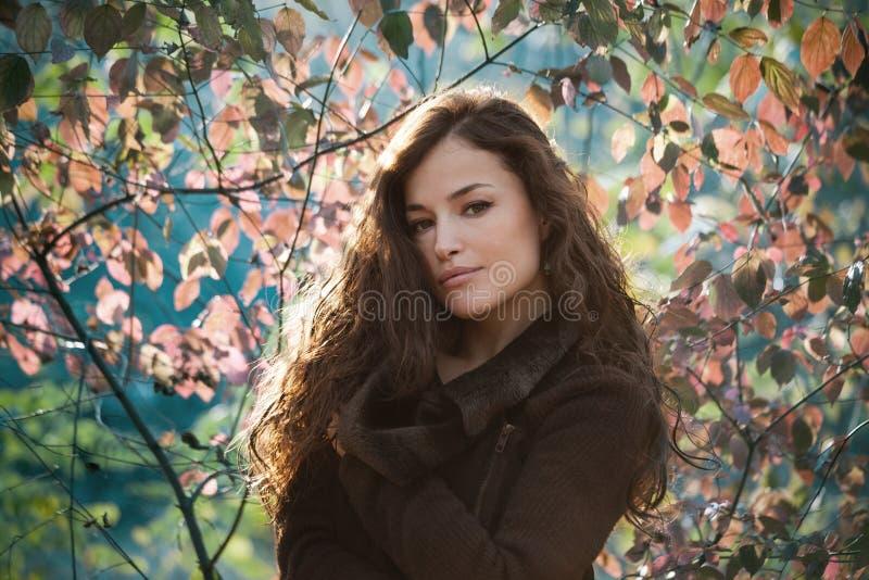 年轻女人秋天画象室外自然光 免版税图库摄影