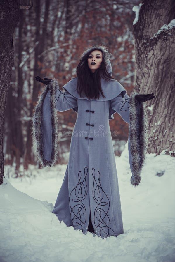 年轻女人童话  库存照片
