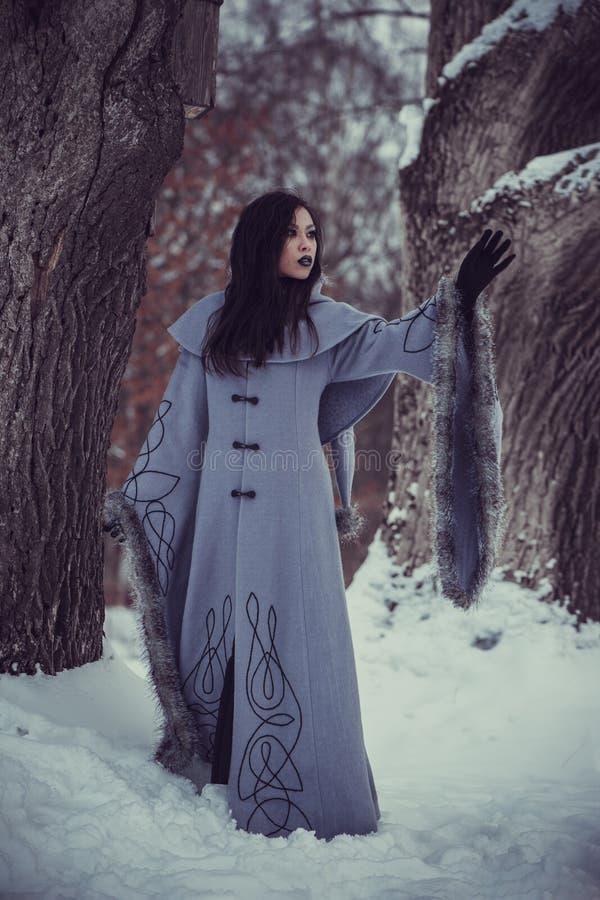 年轻女人童话  图库摄影