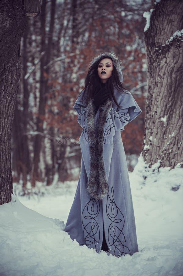 年轻女人童话  库存图片