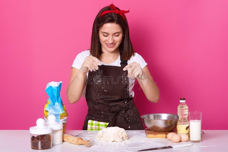 年轻女人面包师在厨房里,洒在面团的白面,烘烤的可口coockies,喜欢自创酥皮点心,摆在被隔绝 库存照片
