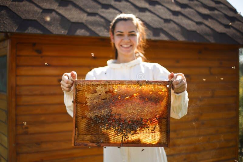 年轻女性与蜂窝的蜂农举行木制框架 收集蜂蜜 养蜂业概念 免版税图库摄影