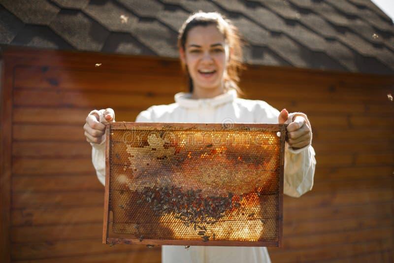 年轻女性与蜂窝的蜂农举行木制框架 收集蜂蜜 养蜂业概念 图库摄影