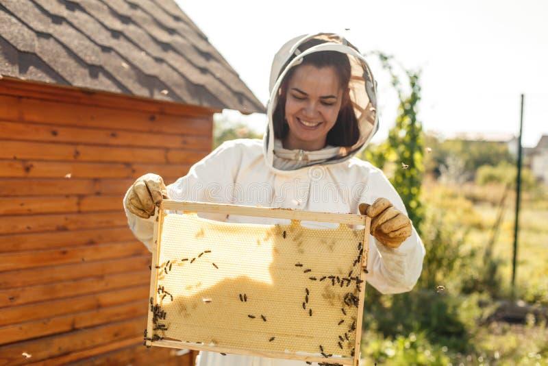年轻女性与蜂窝的蜂农举行木制框架 收集蜂蜜 养蜂业概念 库存照片