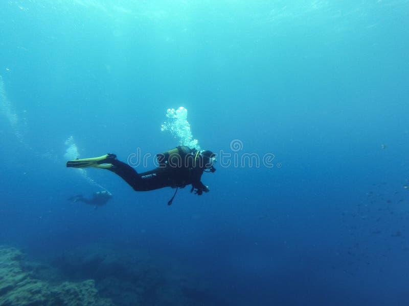 年轻女性轻潜水员在大西洋 免版税库存图片