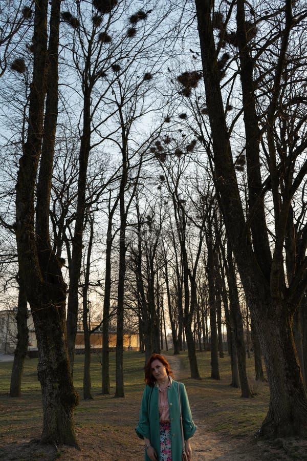 年轻女性鸟类学家观察白嘴鸦筑巢高在树在春天-包斯卡,拉脱维亚,2019年 免版税库存照片