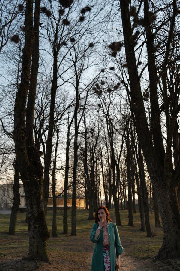 年轻女性鸟类学家观察白嘴鸦筑巢高在树在春天-包斯卡,拉脱维亚,2019年 免版税库存图片