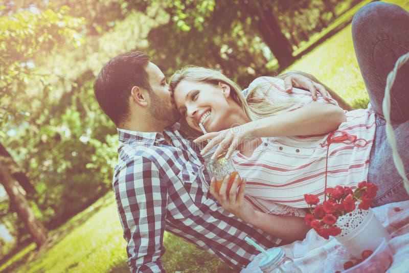 年轻愉快的夫妇有野餐在草甸 库存照片