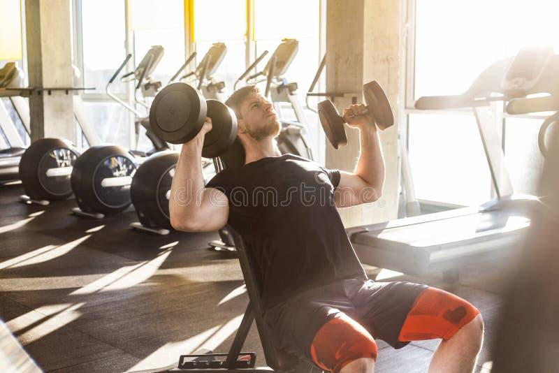 年轻成人体育人训练侧视图画象在单独健身房的 在健身房的运动员锻炼,坐和举行两哑铃与 免版税库存图片