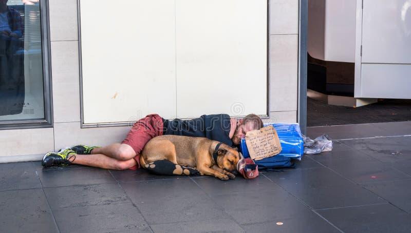 年轻无家可归的人和狗 免版税库存照片