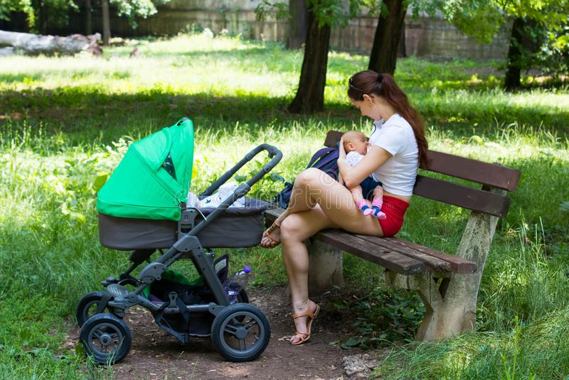 年轻母亲哺乳她逗人喜爱的婴孩,轻轻地拿着婴儿在手上和坐公园长椅,下辆绿色婴儿推车 免版税库存图片