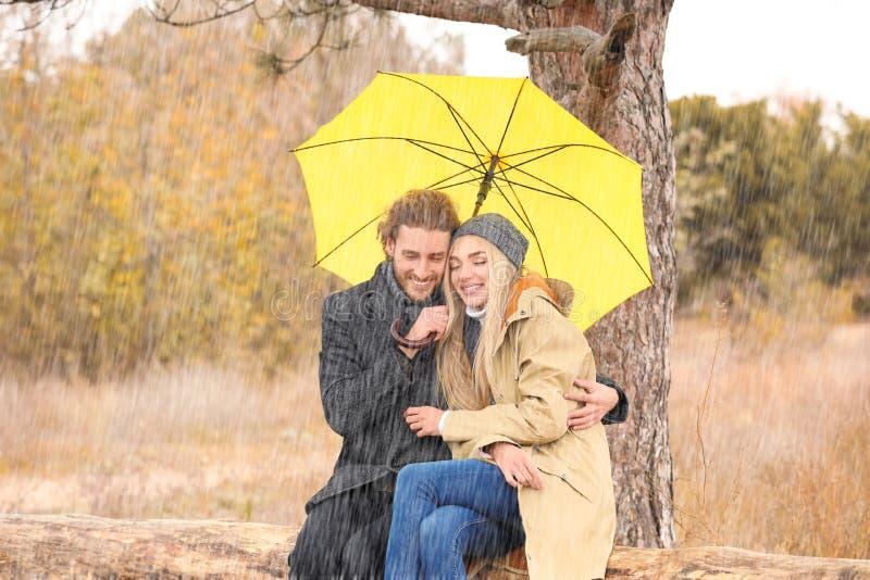 年轻浪漫加上伞在公园 免版税库存图片