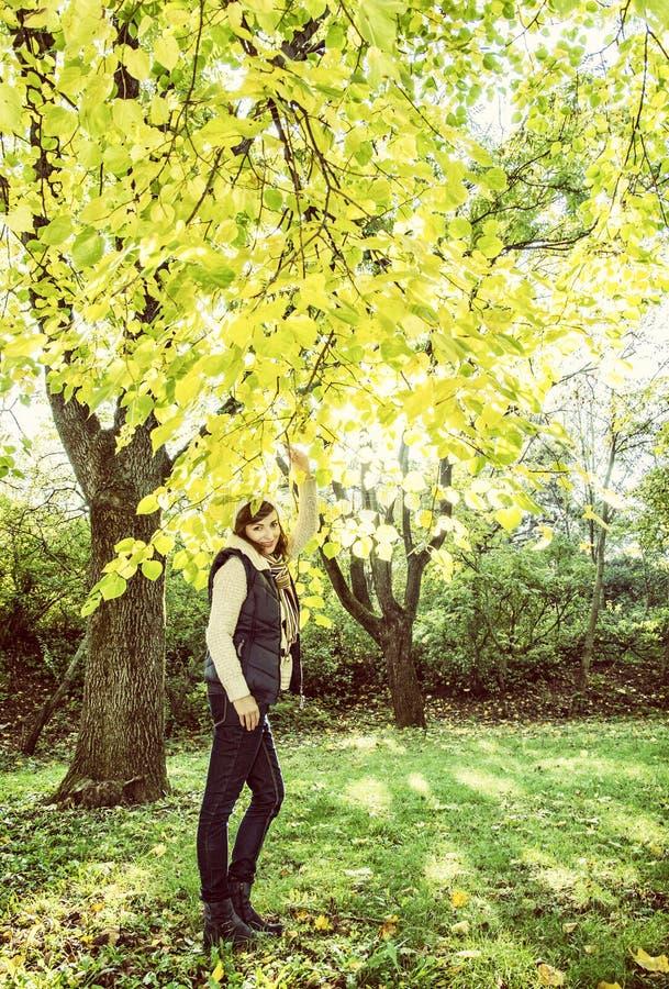 年轻深色的妇女摆在山毛榉树下的,黄色过滤器 免版税库存照片