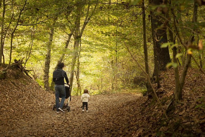 年轻爸爸和小一起走在森林的女婴  库存图片
