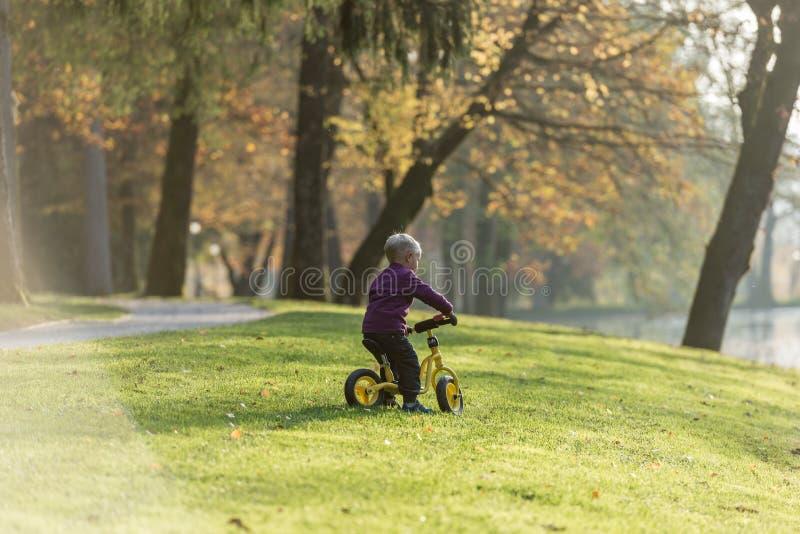 年轻男孩骑马自行车在秋天公园 图库摄影