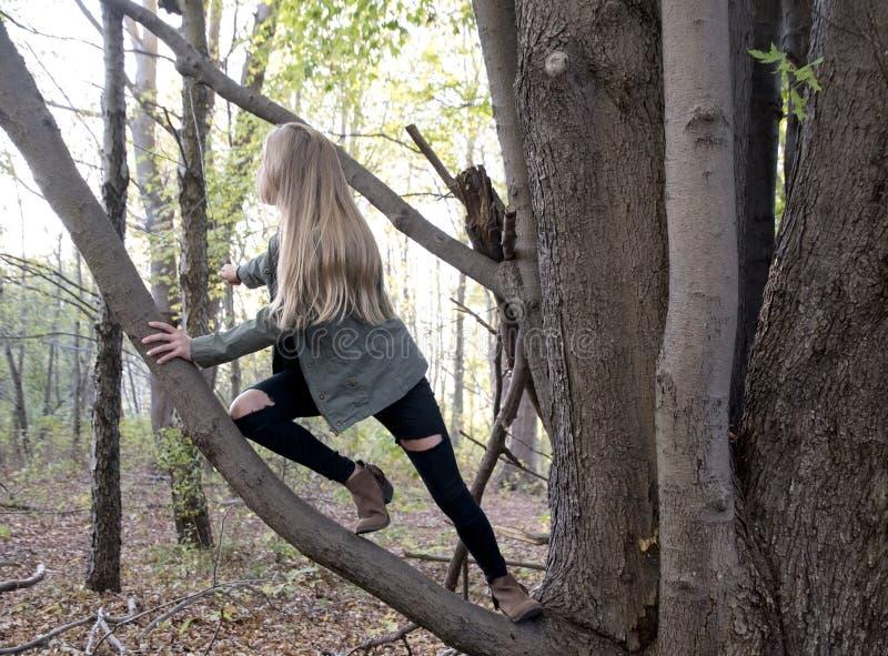 年轻白种人女孩上升的树枝 免版税库存照片