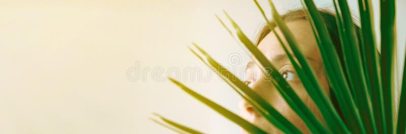 年轻白种人妇女女性在绿色棕榈叶女孩后在窗口看 明亮的早晨阳光 室内植物植物夫人 免版税图库摄影