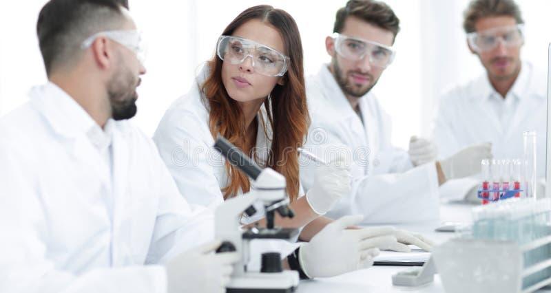 年轻科学家谈论实验的结果在实验室里 库存图片