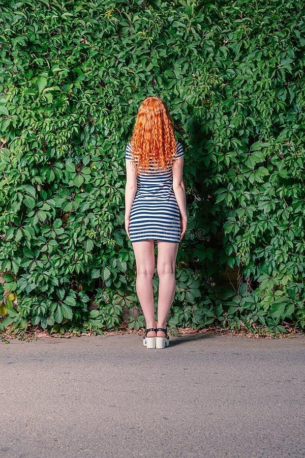 年轻红头发人妇女身分背面图在葡萄前面的留下墙壁 库存图片