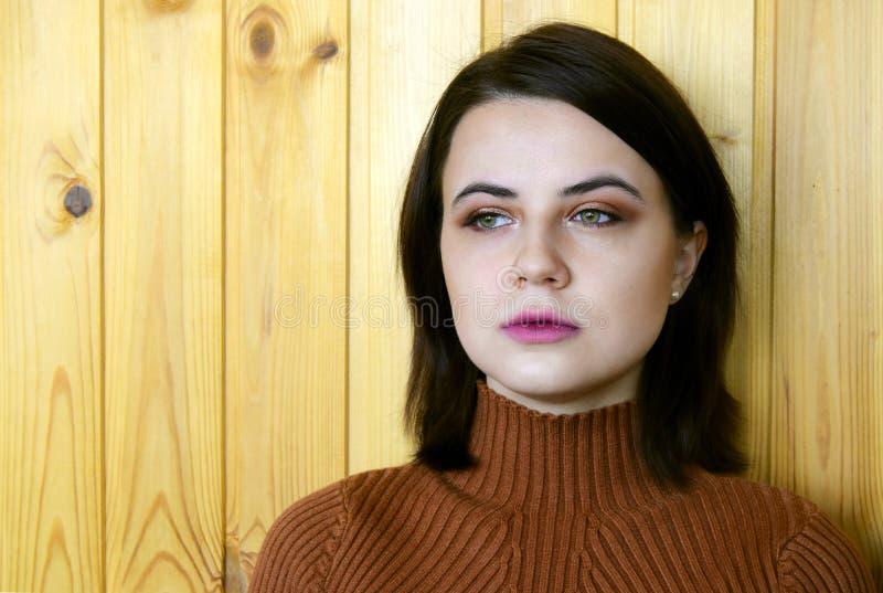 年轻美丽的女孩的画象有嫉妒的 女孩有眼睛和桃红色唇膏棕色构成在嘴唇 免版税库存图片