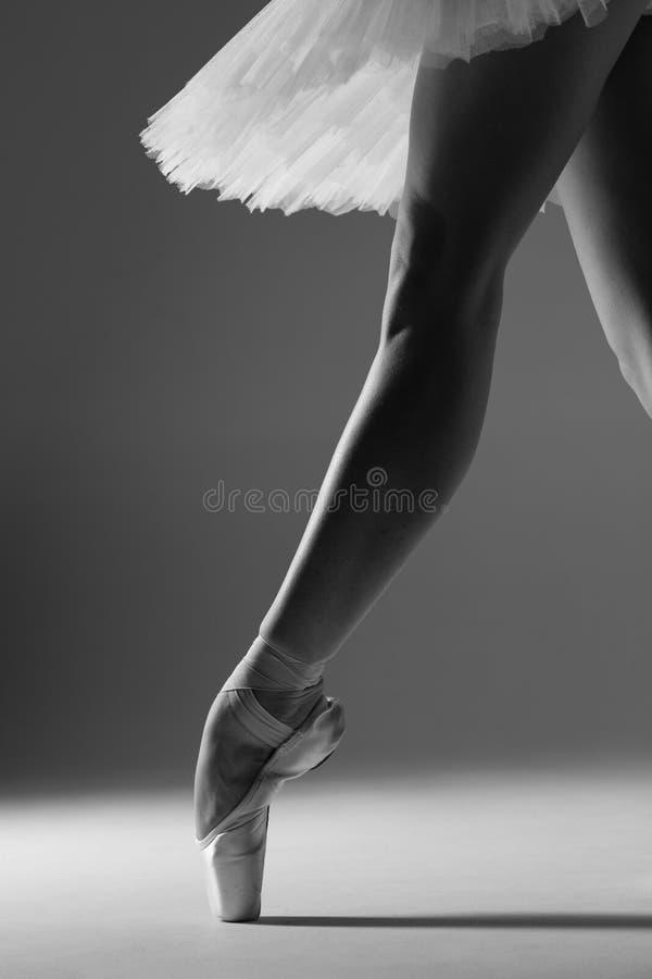 年轻美丽的芭蕾舞女演员在演播室摆在 库存照片