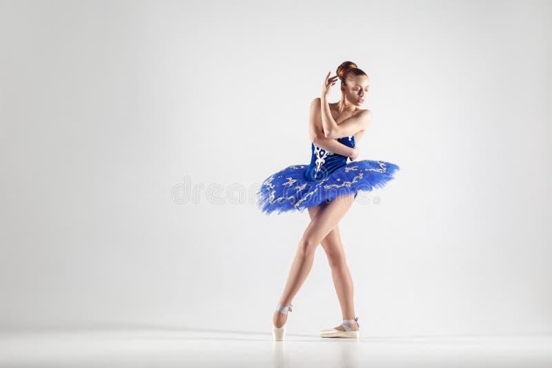 年轻美丽的芭蕾舞女演员用小圆面包收集了佩带蓝色d的头发 免版税库存照片