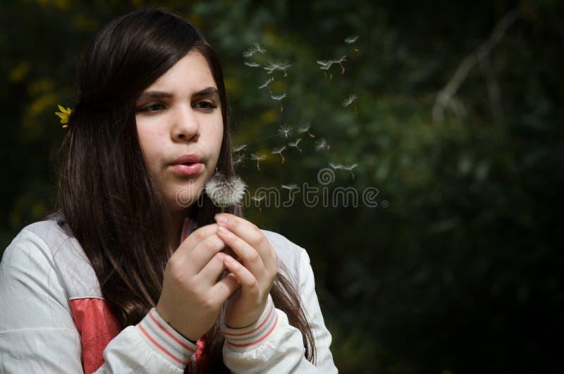 年轻美女吹的蒲公英花 库存图片