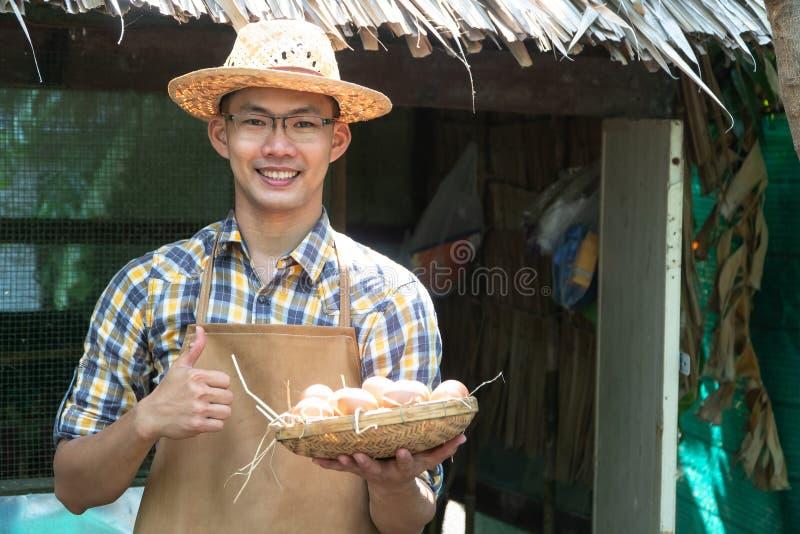 年轻聪明的农夫穿戴格子花呢披肩长袖衬衣褐色围裙拿着新鲜的鸡鸡蛋入篮子在他的一个养鸡场ho 库存图片