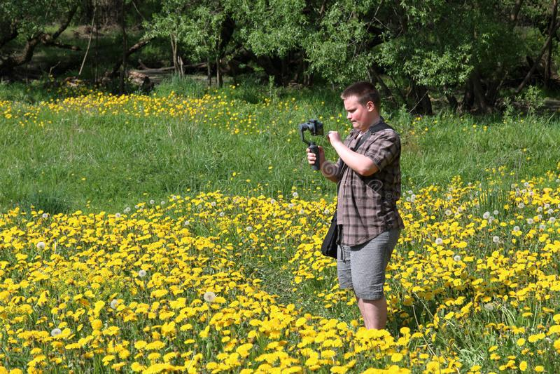 年轻肥满人在一个草甸用开花的蒲公英 举办在常平架安装的智能手机的录像 在附近 库存照片