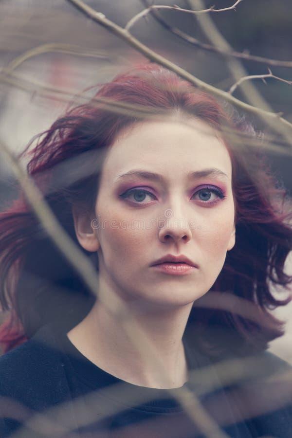 年轻蓝眼睛妇女画象通过树枝室外自然光特写镜头风打击 免版税库存照片