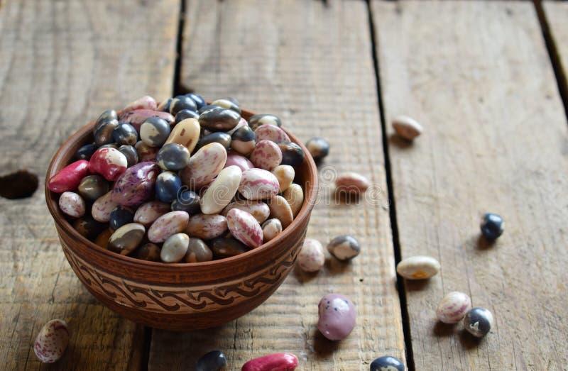 年轻豆类的不同的品种和颜色分类和豆在黏土滚保龄球 原始的食物 健康概念的饮食 有选择性 图库摄影