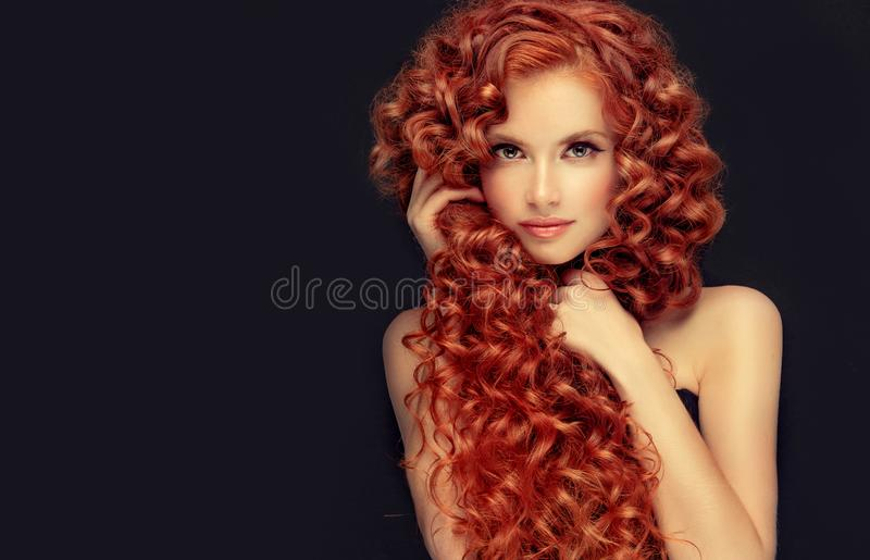 年轻,有吸引力的年轻模型画象与难以置信的密集,长,卷曲红色头发的 卷曲的头发 库存照片