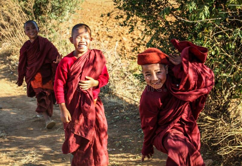 年轻bhuddist修士是愉快使用,掸邦,缅甸 免版税图库摄影