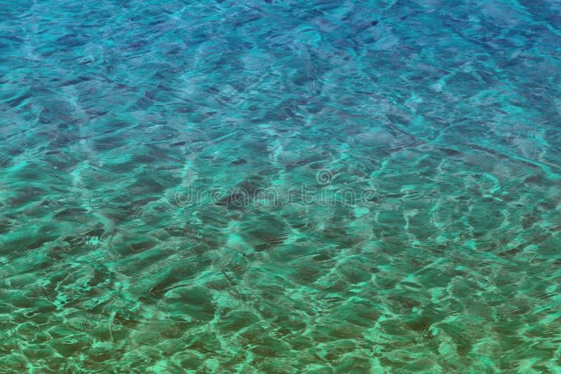 年迈的小野鸭,海洋绿的发光的河水纹理-好的抽象照片背景 免版税库存照片