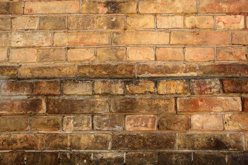 年迈的肮脏的发霉的红砖墙壁背景 库存图片