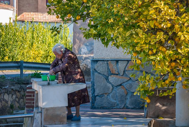 年长妇女洗涤物在穆尔西亚果树园在2011年2月 库存图片