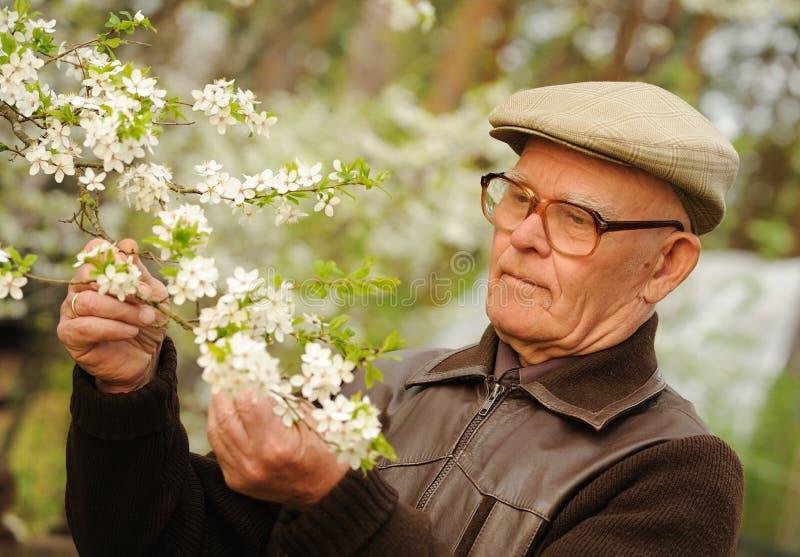 年长愉快的人 免版税库存图片