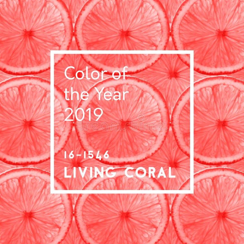 年题字的居住的珊瑚颜色在grapefr的样式的 向量例证