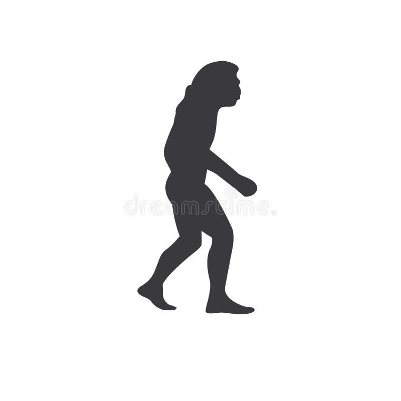 年龄,祖先,祖先,动物,人类学,变动, chimpanze 向量例证