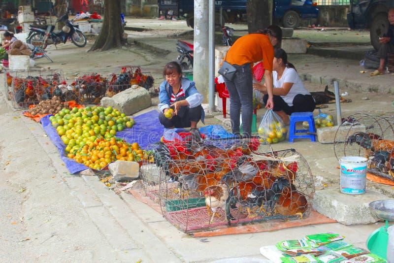 2018年,越南妇女卖活鸡雄鸡市场,越南 免版税库存照片