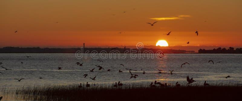 2019年11月,美国南卡罗来纳州查尔斯顿,查尔斯顿港湾的日出朝向堡 库存照片