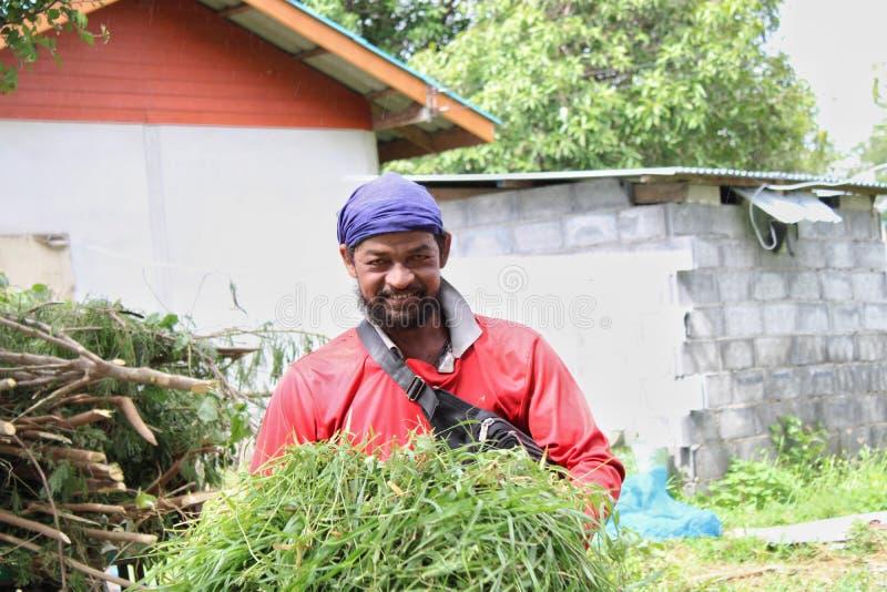 2019年8月24日,《链牙》,泰国 农民在农场工作 库存图片