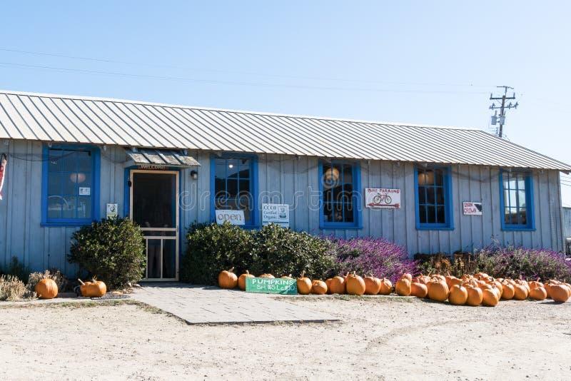 2017年10月20日-斯旺顿,加州:斯旺顿莓果农场,沿太平洋海岸高速公路1的U采撷草莓农场 库存照片