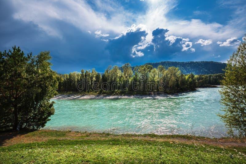 2006年altai威严的katun河 阿尔泰的河风景 免版税库存图片