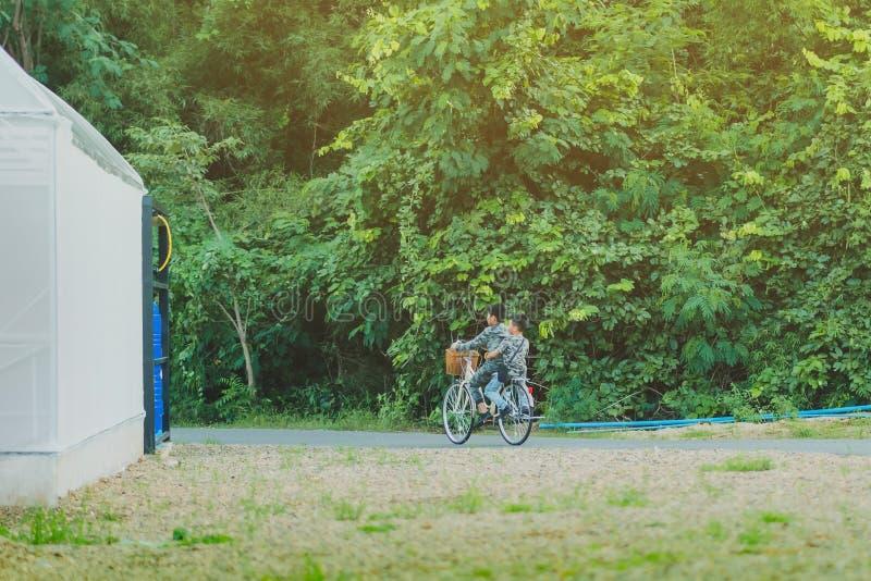 幸福后面看法两个兄弟穿军用伪装衬衣骑自行车 免版税库存图片