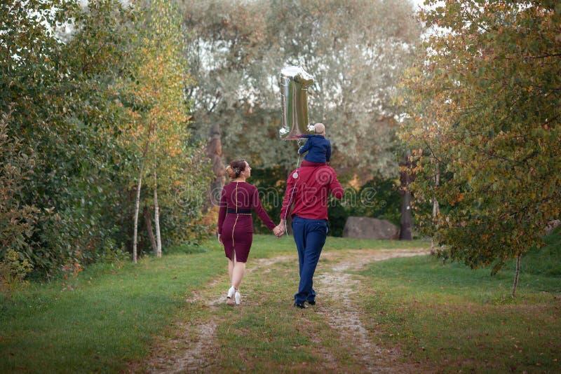 幸福家庭在公园走 幸福在父母生活中在一个夏日 回到视图 免版税库存图片